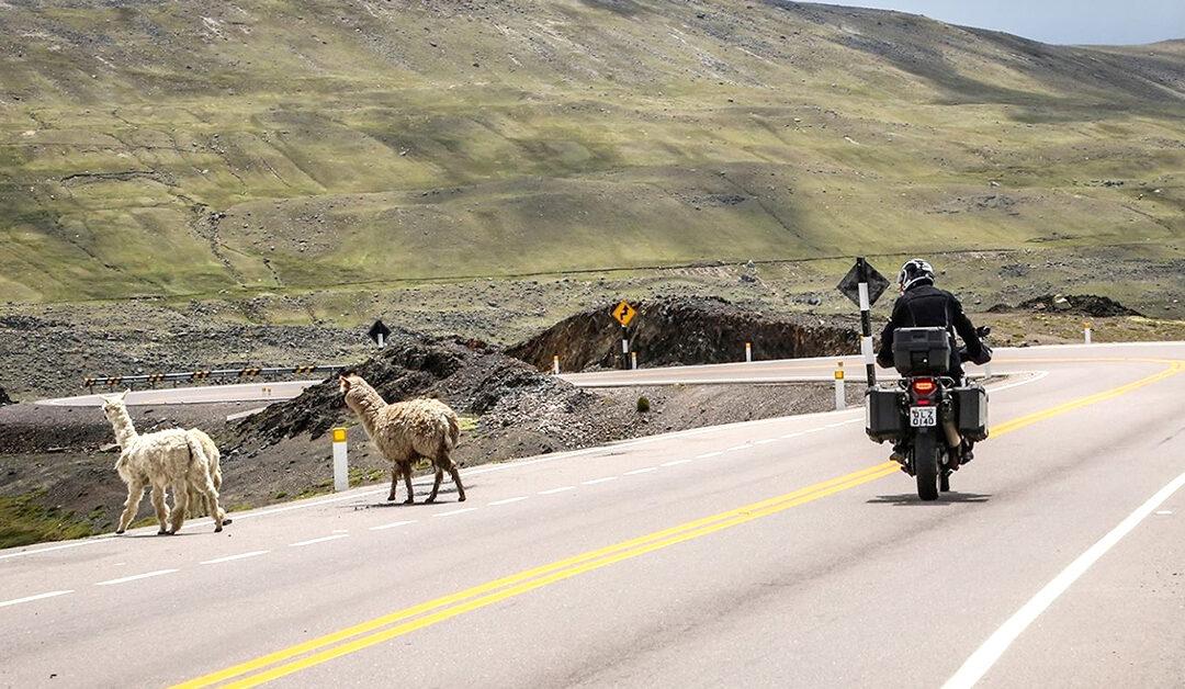 Dicas para pegar a estrada de moto e viajar com segurança